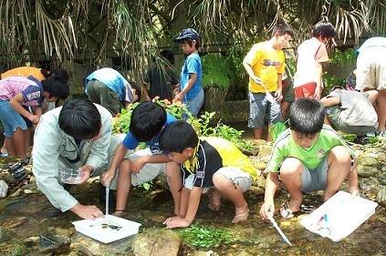 水生生物調査写真 水生生物調査とは? 水生生物調査実施団体募集!!  全国水生生物調査/沖縄県